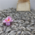 High Quality Striped Sunflower seeds scientific name of seeds