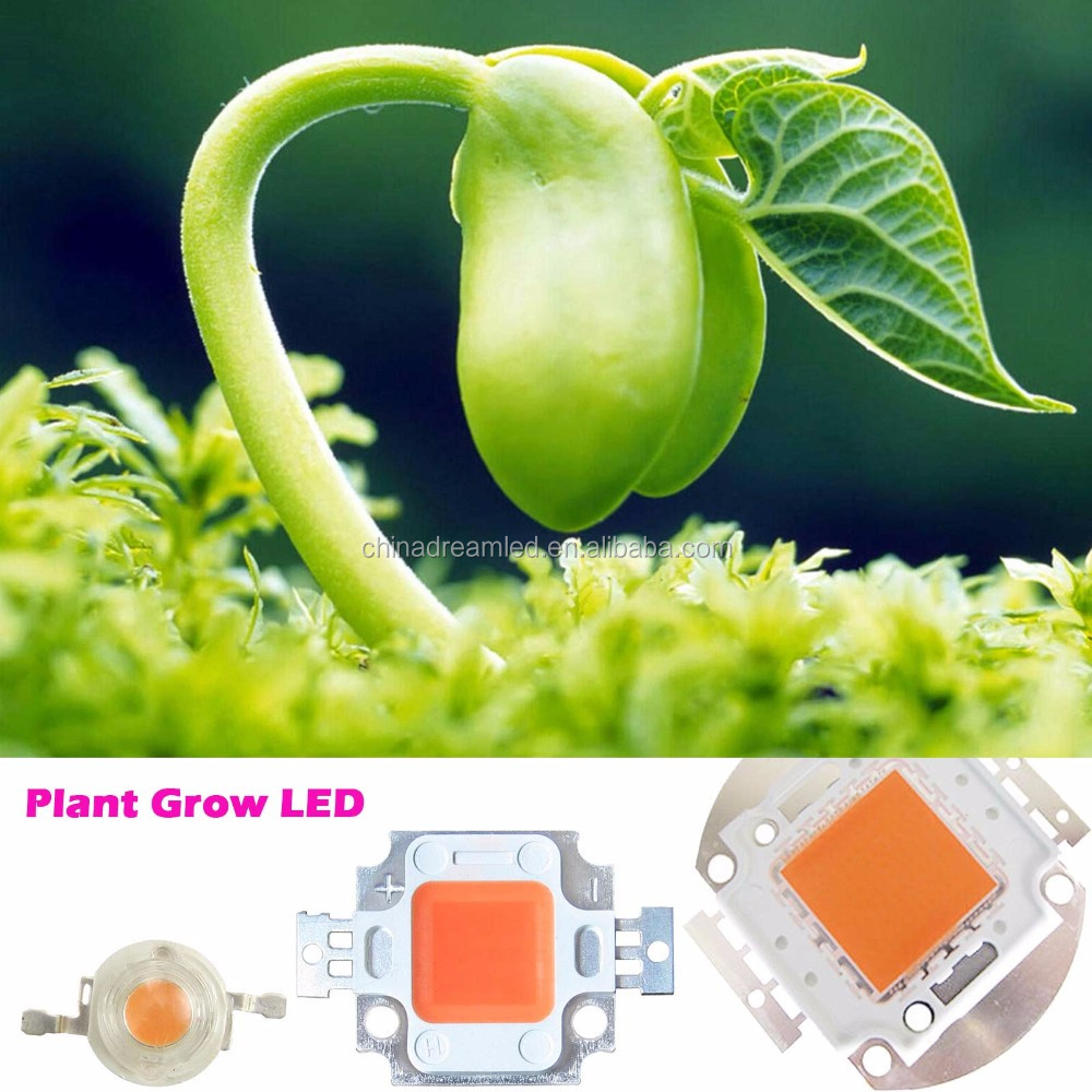 10w full spectrum plant lamp chips epileds 35mil square bracket use for plant growing light