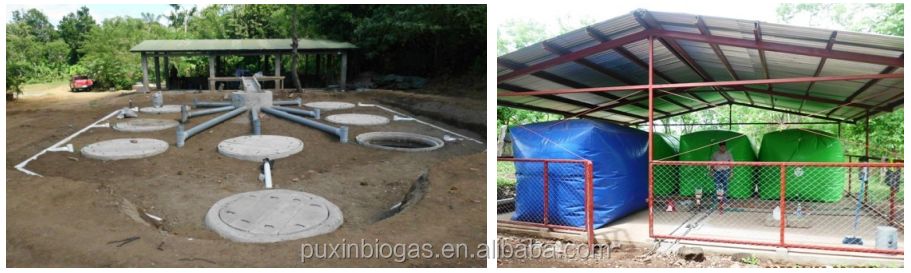 50m3 Biogas Plant With 10kw Generator For Small Farm To Generate ...
