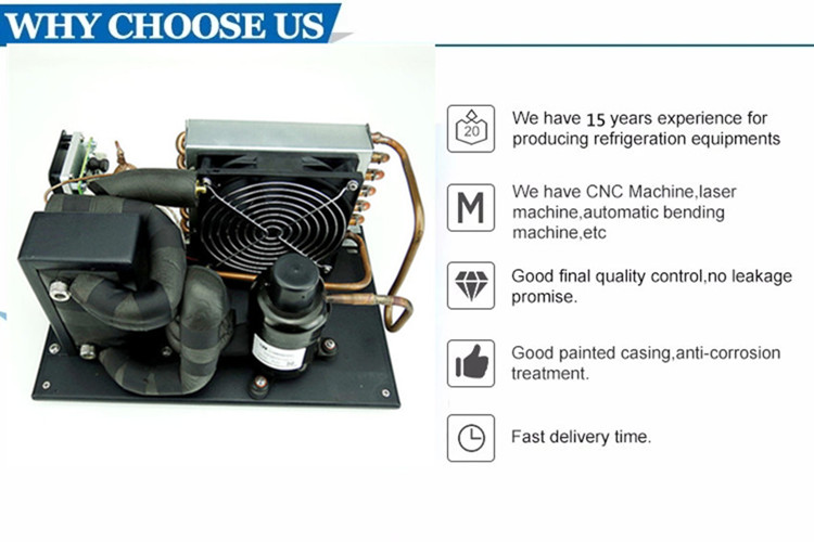 R290 DC 24v 48v mini refrigeration unit micro cooling chiller  for military body cooling system