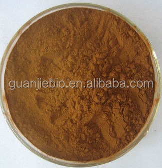 High quality herbal ginkgo extract24%