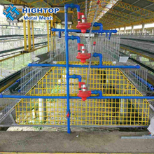 Trade assurance chicken cage coop and box of chicken breeds