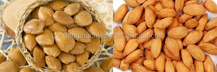 Best Cashew Nut Processing Machine Price Pine Nuts Breaking Shelling Machine