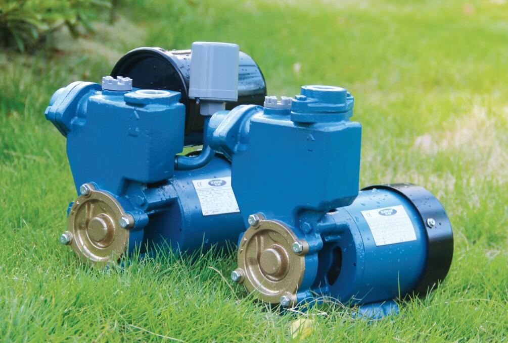 Ps-126 Self-sucking agricultural water pump machine with pressure tank