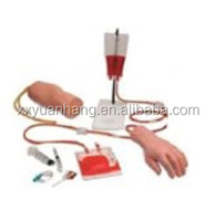 Hand, Elbow Combined Intravenous (blood) Training Model