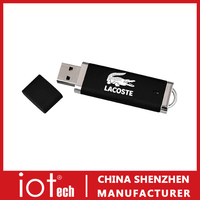 Wholesale Logo Brand USB Flash Stick for Company Gift