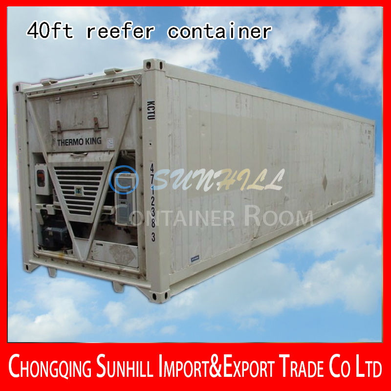 Merry Christmas! 40ft New Refrigerated Ocean Freight Cargo Container