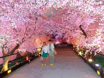 Wedding Artifcial Peach Blossom Tree Plant In Factory