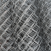304 316 stainless steel chain link fence mesh ( Anping manufacturer )