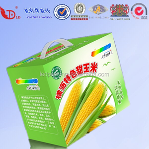 Cheap 5-ply carton box for pineapple packaging shipping