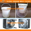 china custom 5 Gallon paint plastic bucket mould manufacturer