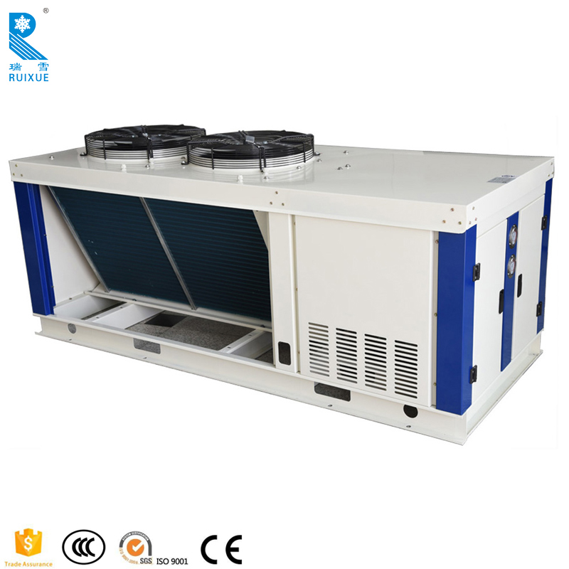 Box Type Air Cooled Chiller Cold Room Refrigeration Equipment Condensing Unit Manufacturer For Seafood With V Type Condenser
