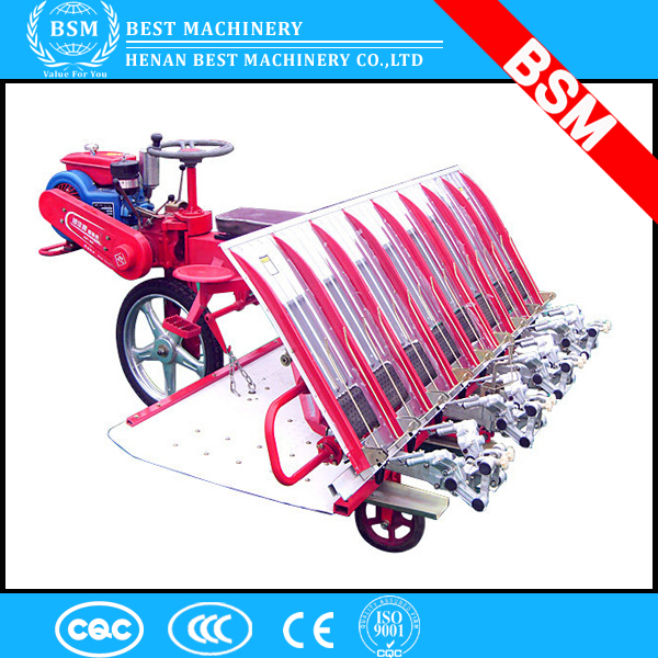 8 rows walking rice transplanter with low price / rice transplanter for sale