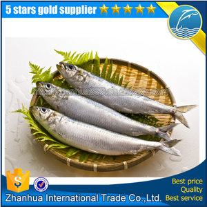 Frozen Sardine Hgt For Sale