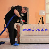 2015 CE 6kw 8bar mobile portable mini size steam carpet carpet and upholstery cleaning service