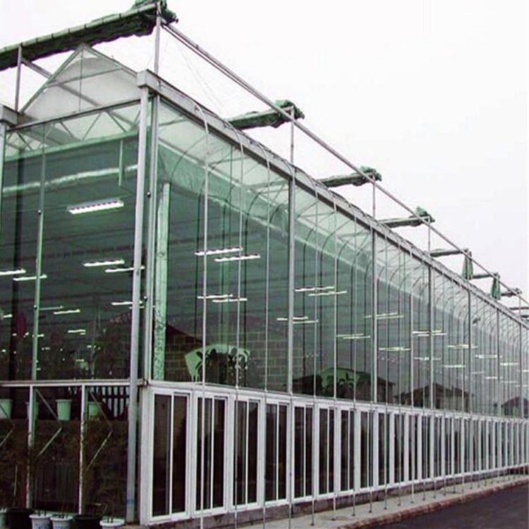 Mehrfeld-kommerzielle Venlo-Glasgewächshäuser