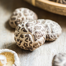 Hot Sale Log White Flower Mushroom / Dry Shiitake /hot Sale Dried Mushroom