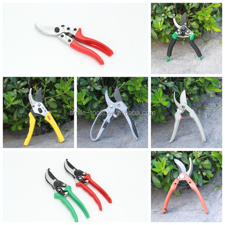 Stainless Steel Garden Pruning Scissor Bonsai Scissors