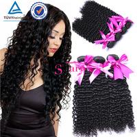 New Hair Styles Unprocessed Virgin Brazilian Kinky Curly Braid in Remy Human Hair