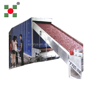industrial red chilli vegetable and fruit food dehydration hot air drying mesh belt dehydrator/dryer machine