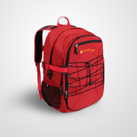 2016 new arrival sports Backpack made by 600D Polyester with tablet sleeve functional and popular for sports