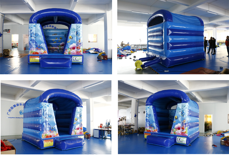 inflatable bouncer house.jpg