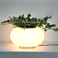 beautiful creative potted table lamp for room decoration in guzhen