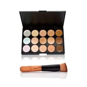 Factory stock 15colour palette + 1pcs ashtree brush bevel head concealer
