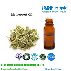 Hot sale on high quality motherwort oil, light yellow motherwort oil with factory price