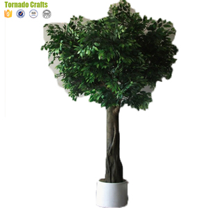 2018 Large Natual Artificial Banyan Tree Indoor And Outdoor Decorative Live Ficus Tree
