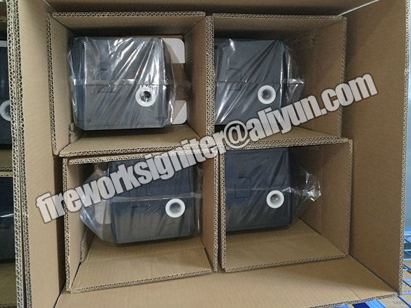 paper carton packing2.jpg