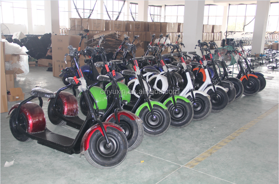 Factory Directly 1000W halley electric scooter 800w electric citycoco scooter
