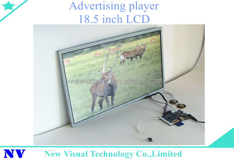 USB and SD card 18.5inch lcd display advertising machine equipment