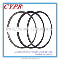 Cypr Piston Ring De08,Dia111mm