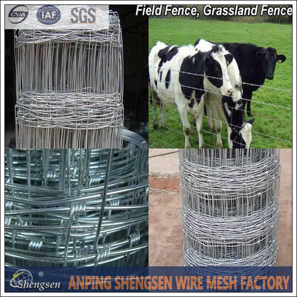 Square Wire Mesh Fence Wholesale, Square Wire Mesh Suppliers - Alibaba