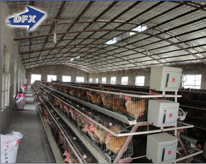 China best supplier steel frame layer egg chicken cage poultry farm construction house design for sale in Kenya