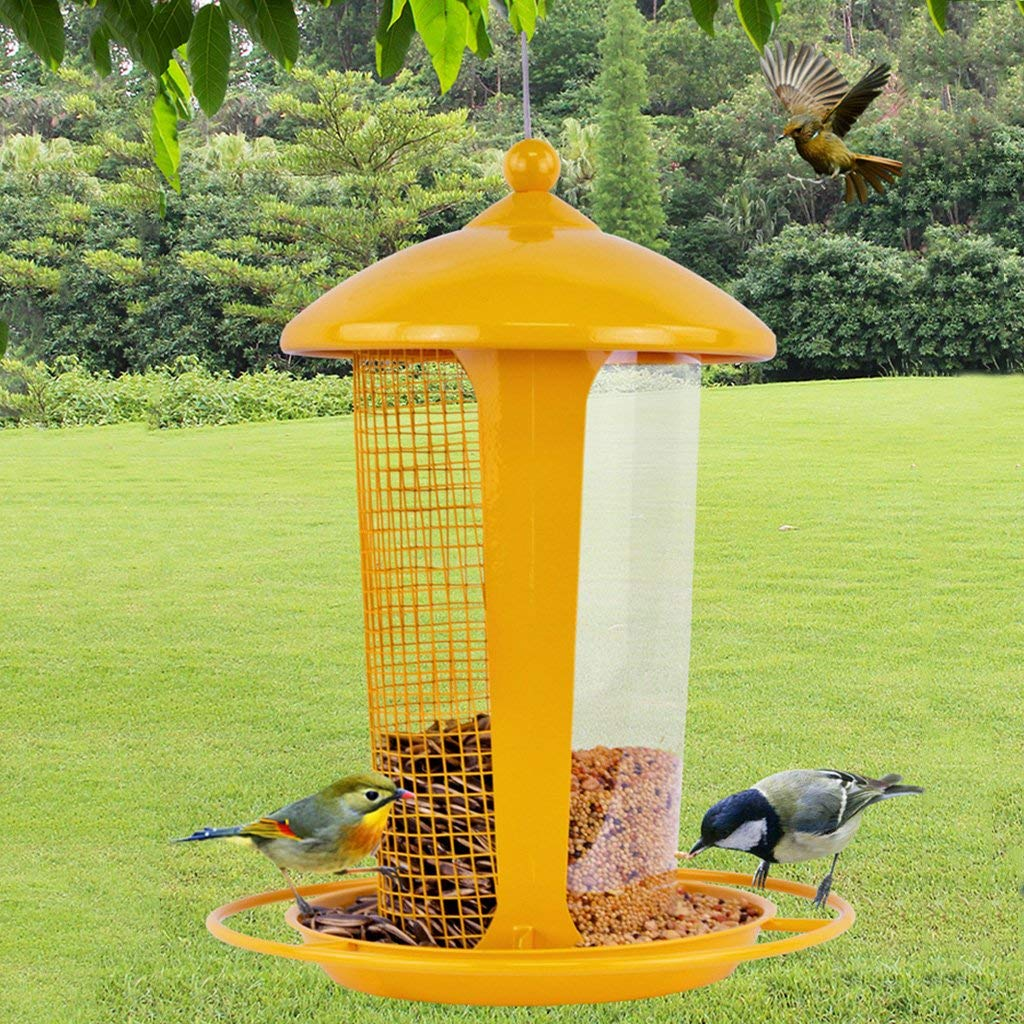 Get Quotations Bird Feeder Clic Hanging Feeders For Finches Seed And More Great Attracting