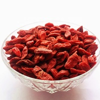 lycium barbarum medlar dried goji berries fruits for sale