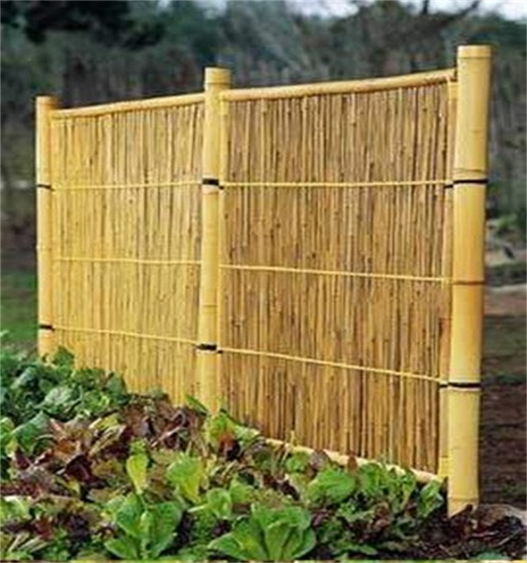 Wy-J127 nature garden edging fence bamboo pole for sale
