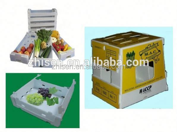 China export corrugated plastic box/correx box manufacturer,supplier