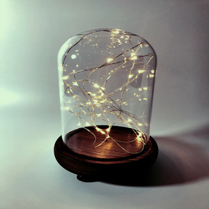 Bell Jar Small Glass Dome with Wood base \\ Taxidermy Glass Butterfly Dome \\ Display Tall Decorative Clear