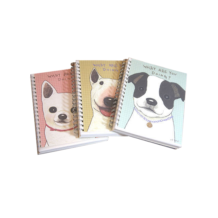 2016 Cheap a4 spiral student 3d notebook with color custom pages wholesale