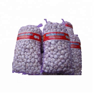 cheap price HDPE mesh bag for onions garlic