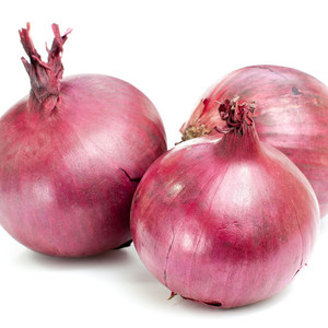 2018 Latest vegetable seeds onion seeds for sowing