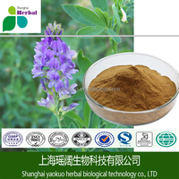 Extract Chemicals Alfalfa Root Extract, Herbs for Diabetes Alfalfa Extract Powder, Alfalfa Powder
