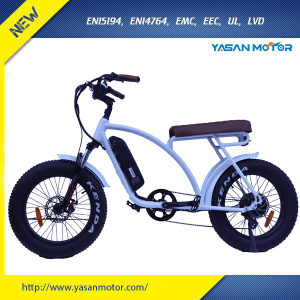 Newest 48V 500W Power 20inch Two People Fat Tire Electric Bike With Long Seat E Bike For Adults