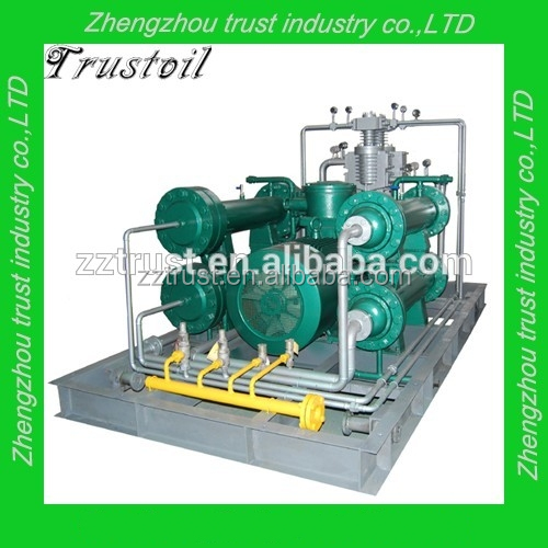 Natural gas filling cylinder compressor with frequency conventer