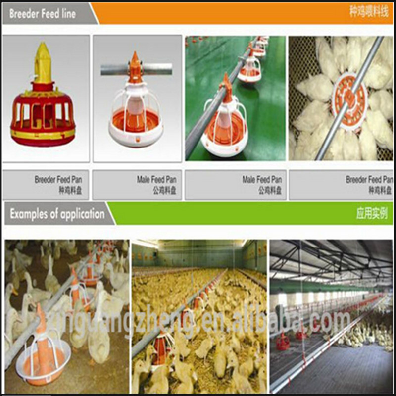 High Quality Poultry Breeder Houses