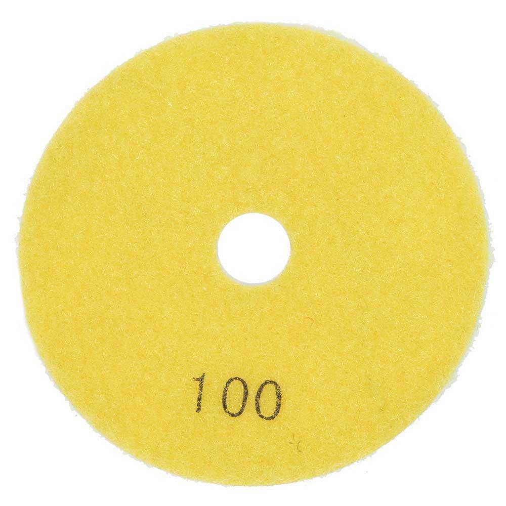 """Resin Diamond Polishing Pad, 4"""" 100 Grit - E4100"""