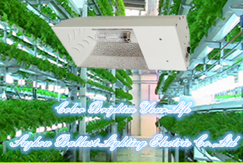 Commercial greenhouse lighting equipment high pressure sodium commercial greenhouse lighting equipment high pressure sodium vertical focused grow light reflector small all in mozeypictures Gallery